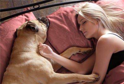girl-pet-bed